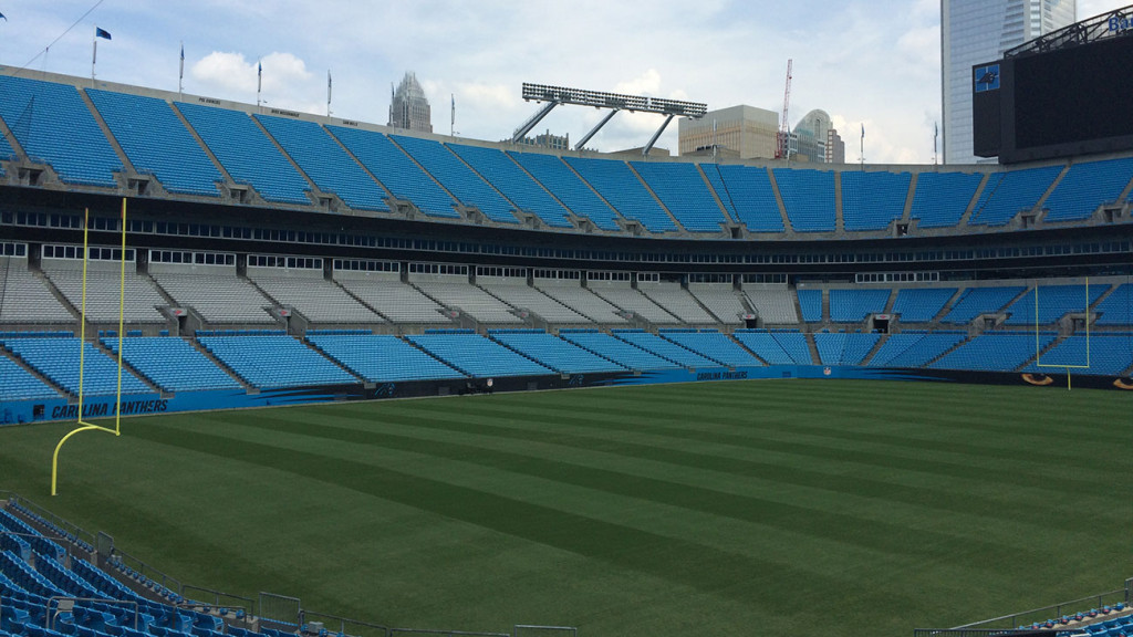 Panthers fashion: What to expect to see in the bleachers Sunday