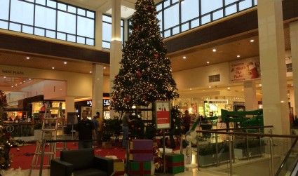 City Smart: Santa glacier removed from SouthPark Mall to paid patriotism's impact on Charlotte sports
