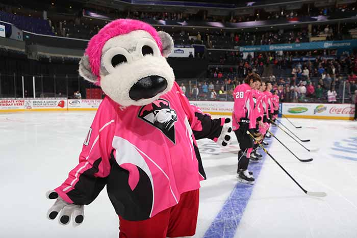 checkers pink rink