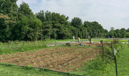 How Friendship Gardens cultivates goodness in Charlotte