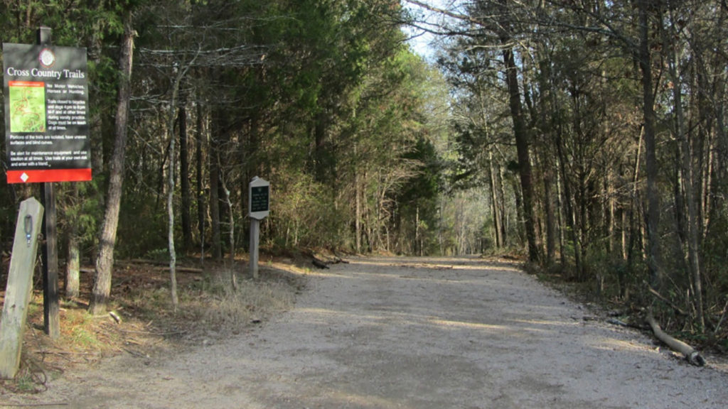 7 running routes I'm obsessed with ever since I moved away from the Booty Loop