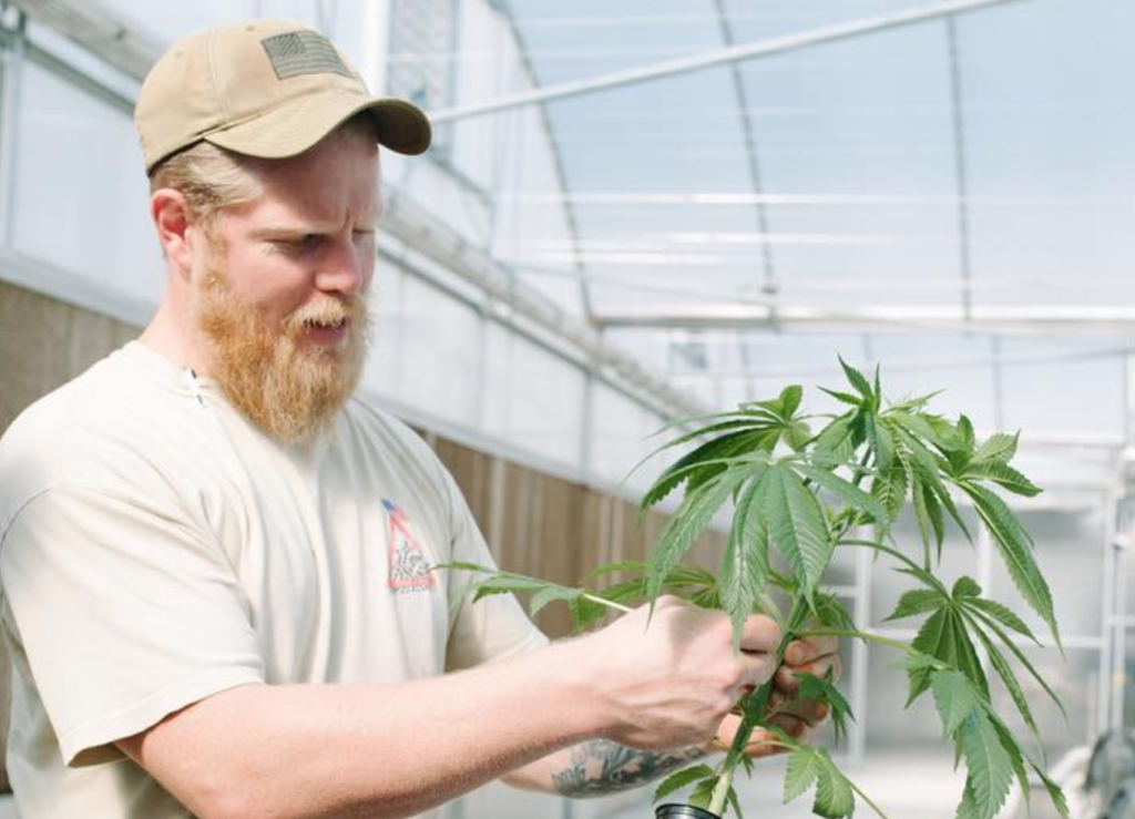 North Carolina's first legal hemp dinner in 80+ years is this weekend in Charlotte