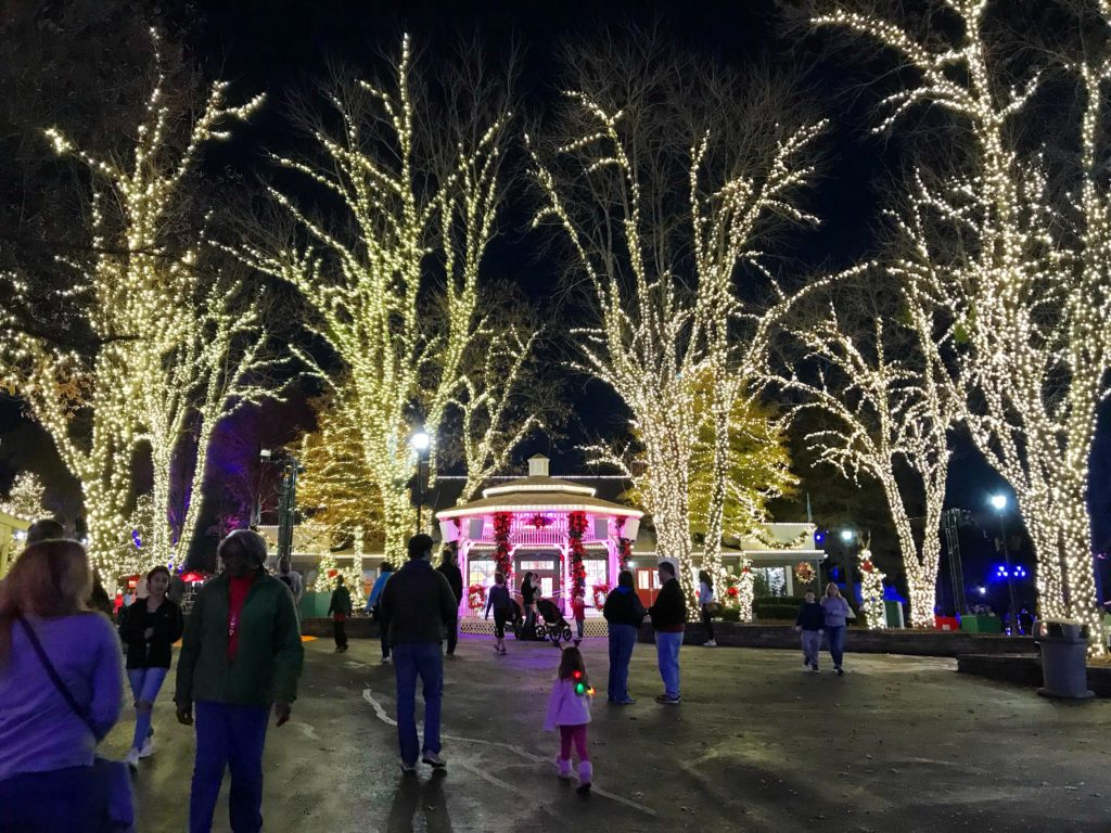 Agenda Weekender: 50 cool things to do in Charlotte this weekend including WinterFest at Carowinds and Black Friday brunch at Superica