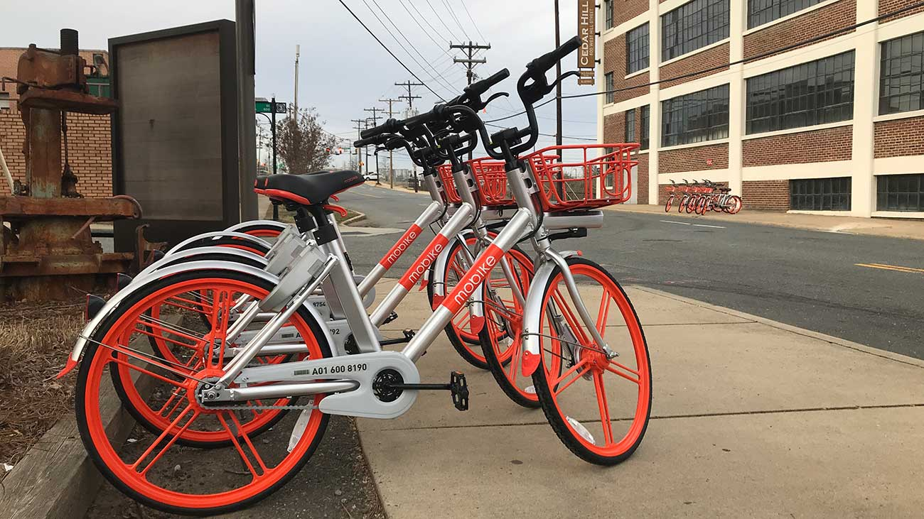 Those brightly colored bikes will likely be littered around our city until October