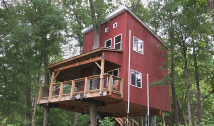 You can stay overnight in a treehouse at this vineyard just 25 miles from Charlotte