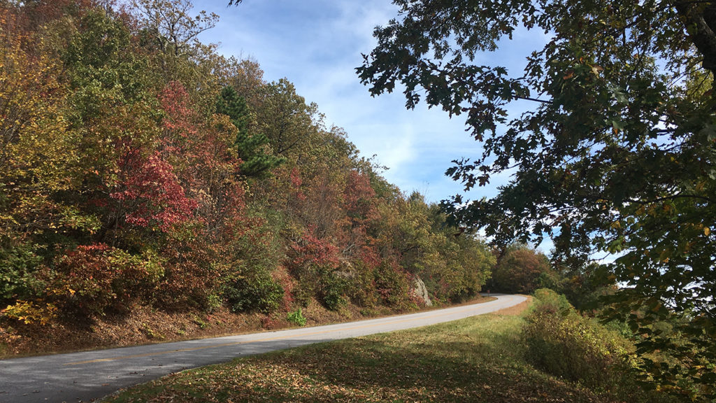Leaf peeping is so hot right now. Win $200 towards a day-trip to take in the fall sights from Charlotte Eye Ear Nose & Throat Associates. ENDED