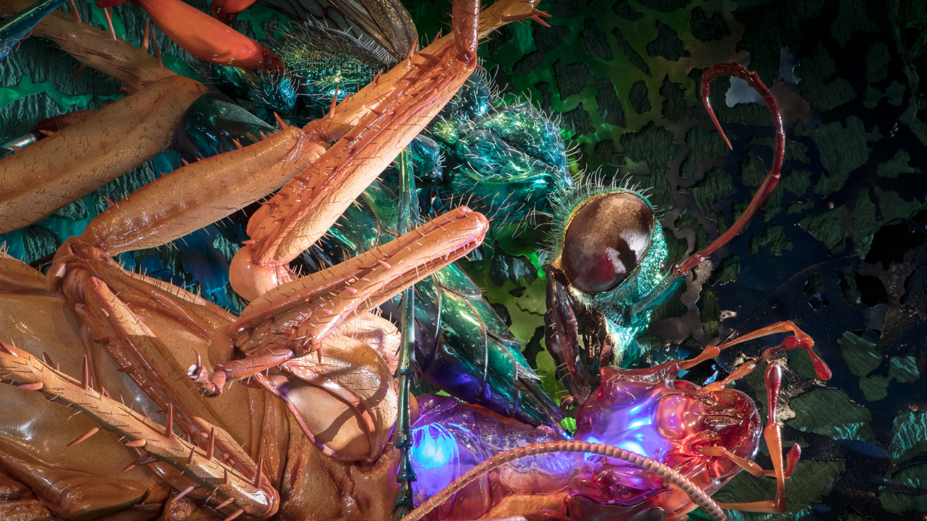 Cabin fever? Experience larger-than-life Bug Lab at Discovery Place Science this winter