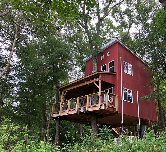 treehouse-vineyards-in-charlotte-nc