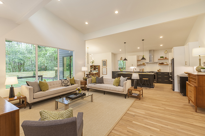 Home of the Year 2019 mid-century modern living room