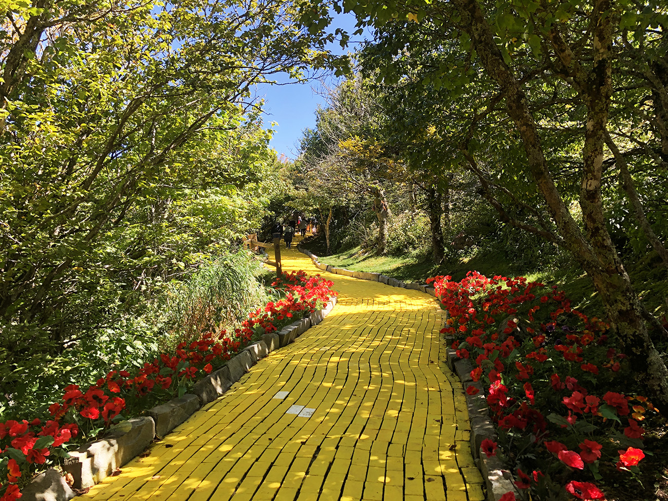 Everything you need to know about the 'Wizard of Oz' theme park in Beech Mountain