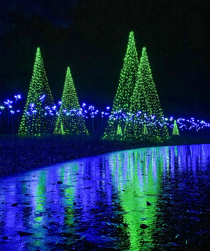 reflection of christmas lights at daniel stowe botanical garden charlotte