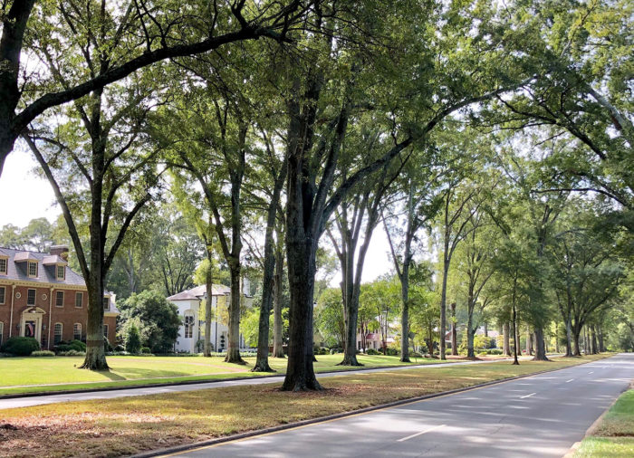 beautiful streets real estate 1300