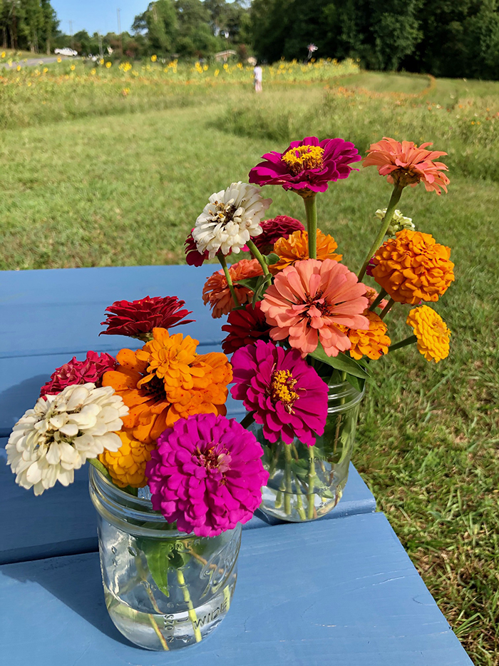 flower picking at mclawland farms