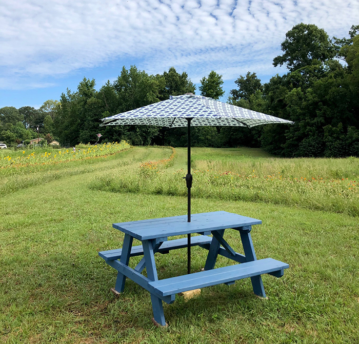 picnic table at mclawnland farms