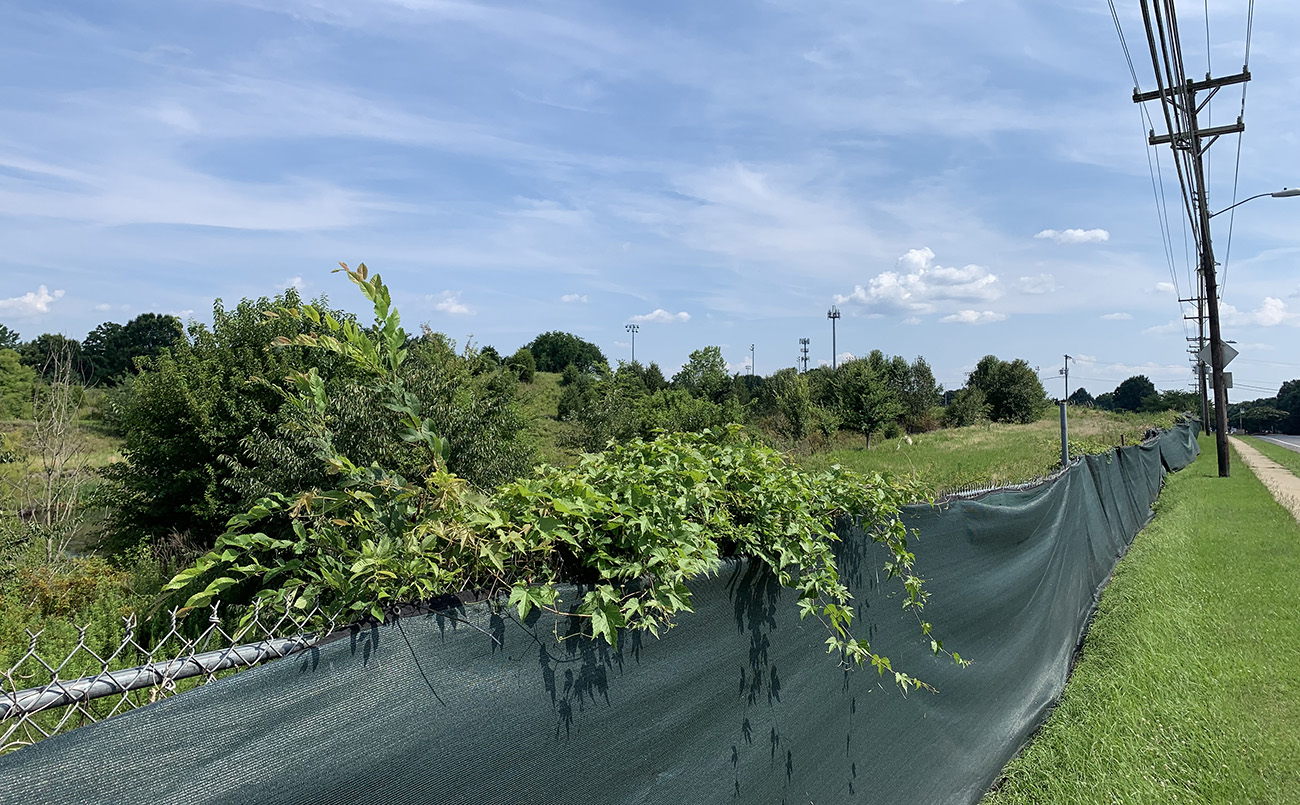 What's with that huge, overgrown property out by Quail Hollow?