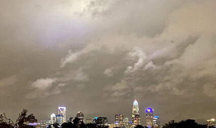 Save the birds, Charlotte. Turn off your office lights