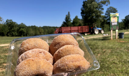 Hall Family Farm now open 45 minutes from Charlotte